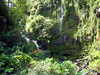 Falls on Road to Hana