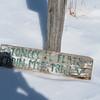 2-21-21: Whitegrass wonder