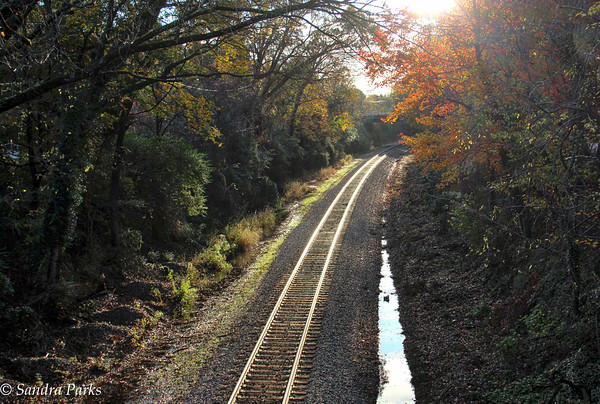 11-20-15: early morning, on the WIlliamsburg tracks