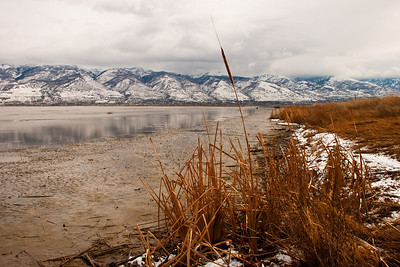 farmington waterfowl management area, utah