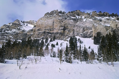 hellgate, little cottonwood canyon, alta utah