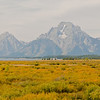 TRWY-8037: Teton National Park