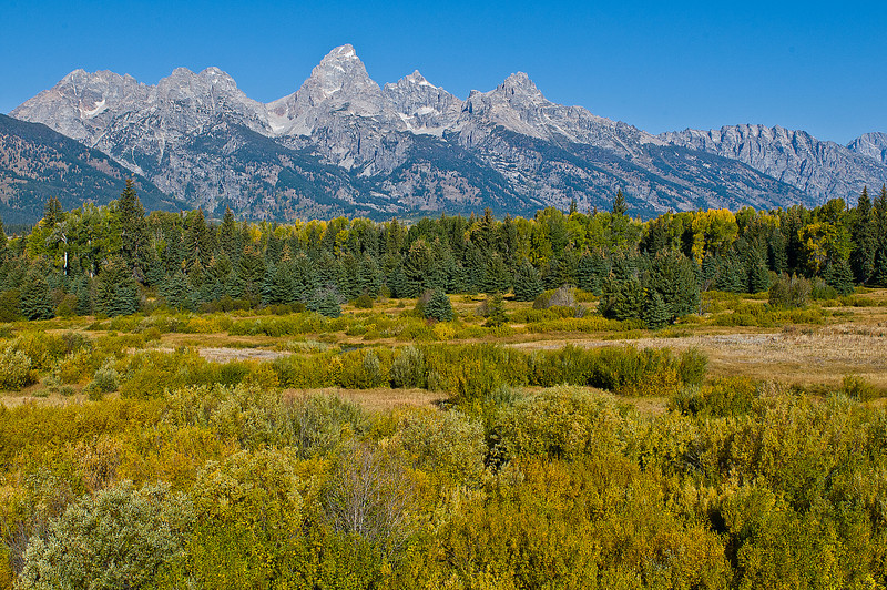 TRWY-8062: Peaks of the Tetons