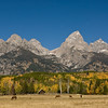 TRWY-8026-Horse ranch in Teton NP