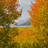 TRWY-8035: Late September in the Tetons