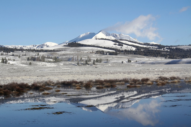 Swan Lake Flats in White
