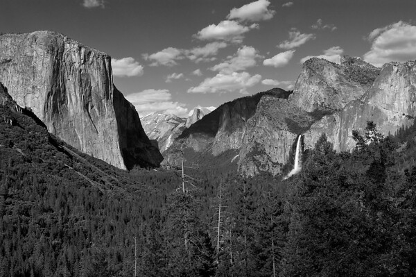 Yosemite in Black and White 2010
