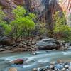 The Narrows, Zion National Park, Utah