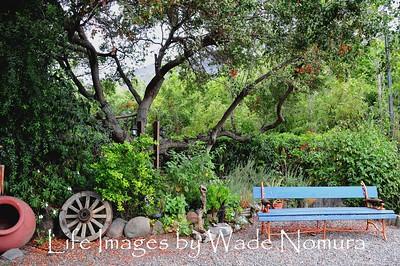 Julio's Garden, Olmue , Chile