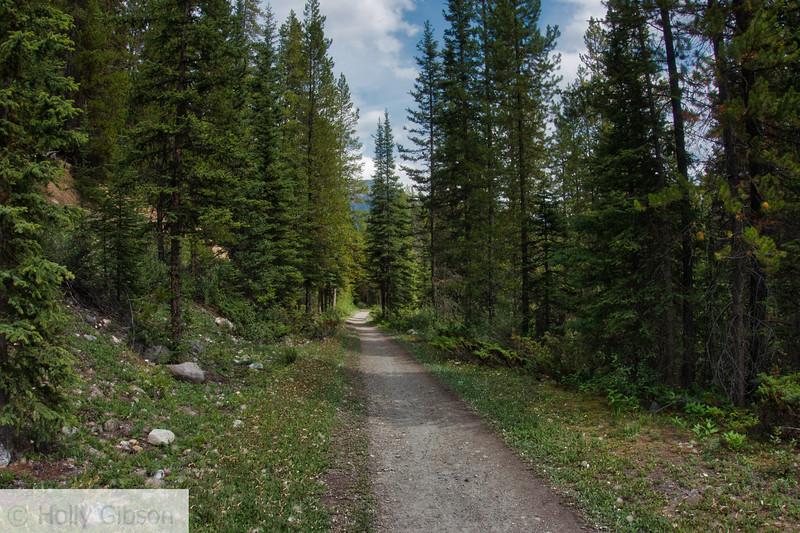 Trail to Lake Louise
