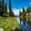 Mount Reveltstoke - B.C.
