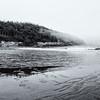Fog Along Acadia's Shore