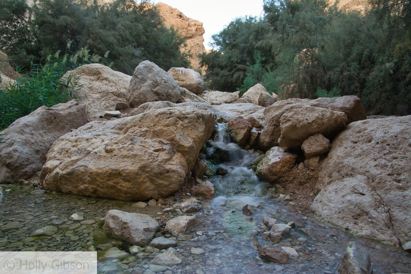Wadi Bokek - Dead Sea