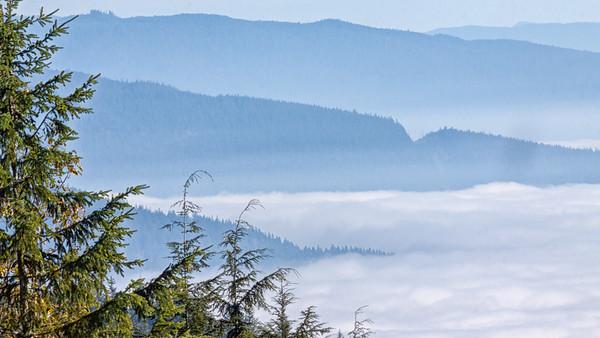 Mountain Fog_27-1