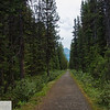 Trail to Lake Louise