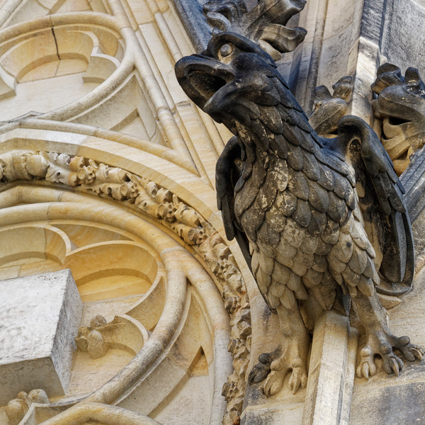 Bird on the Cathedral at Prague