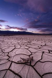 Mud Flats No 4