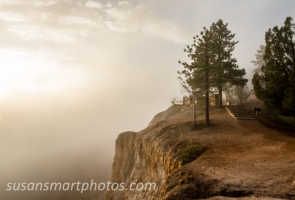 Foggy Inspiration Point