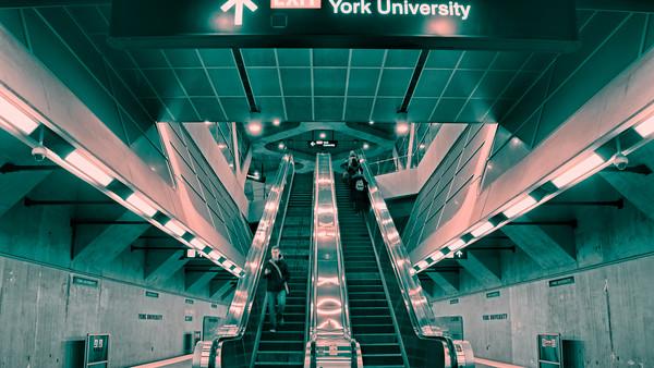 York University_6-1
