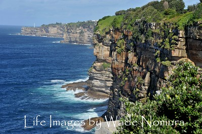 Cliffs of Sydney Australia