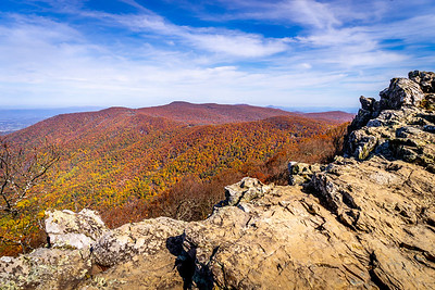 Hawksbill Summit in Fall Looking Northwest