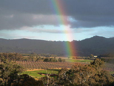 Rainbow over vineyard in Barossa Valley, Australia.