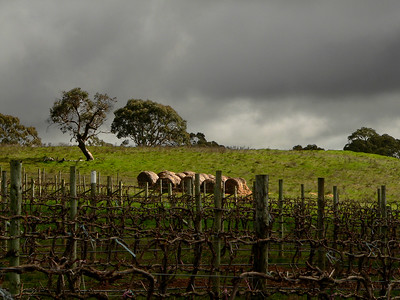 Sunlight breaks through clouds and shines on hay bales in Australia. Panasonic FZ20.