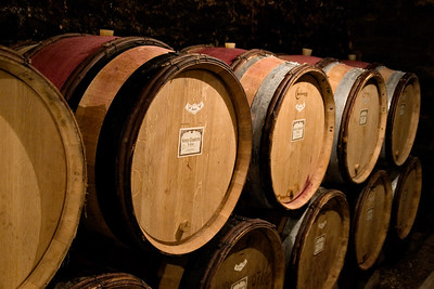 Wine barrels in the cellar of Domaine Maume in Gevrey-Chambertin, Burgundy.