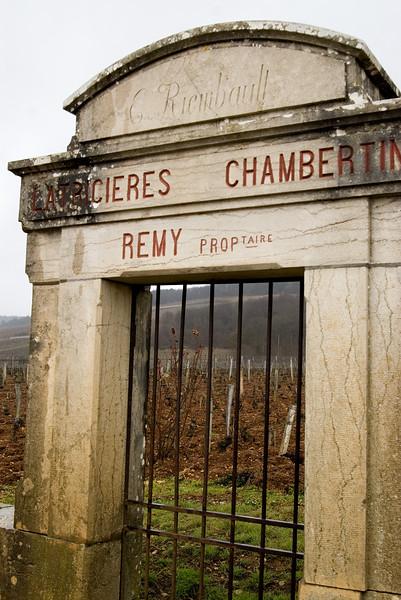 Grand cru vineyard, Latricieres Chambertin, in Gevrey-Chambertin.