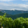 The Alps visible from vineyards in the Alto Adige wine region of Italy.