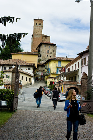View from the front gate of the Palladino winery of the town of Serralunga in the Langhe, Piedmont region of Italy.
