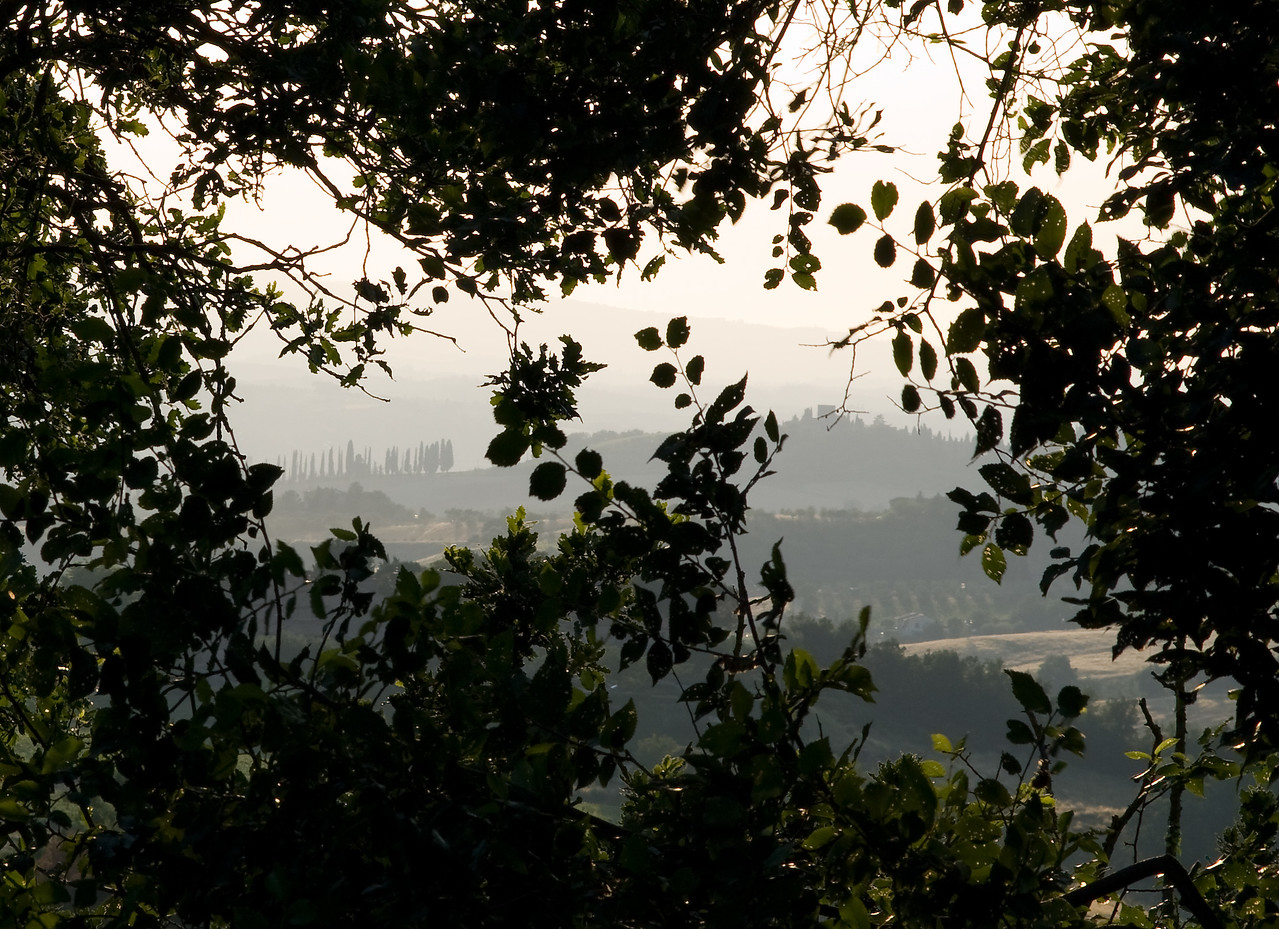 View from the estate of Rodano Chianti Classico in Tuscany.