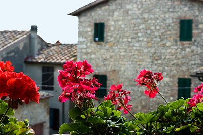 Red geraniums on the stair landing of our hotel in the town of Strove, Italy in Tuscany.