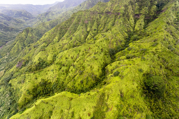Mountains of Halelea