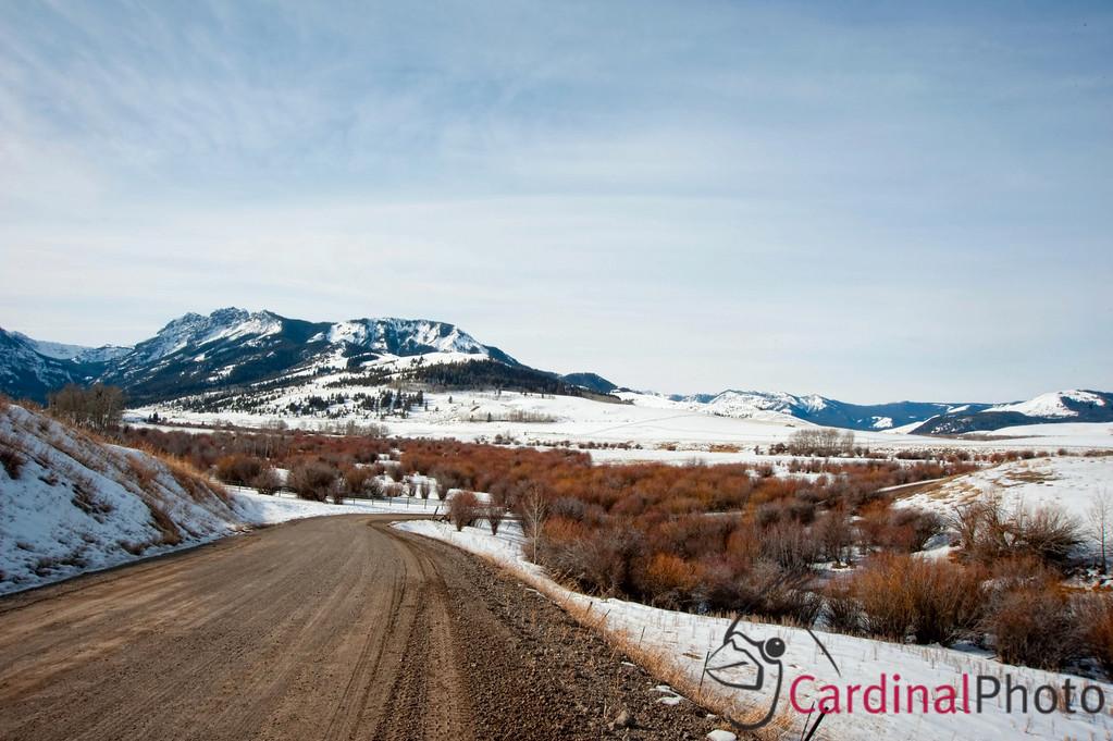 Yellowstone Scenics and Old Faithful