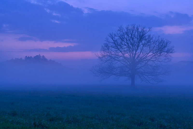 Blue Dusk at Cade's Cove