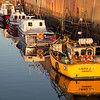 Early morning sunlight on the launches tied up at FIPASS, Stanley Harbour, Falkland Islands