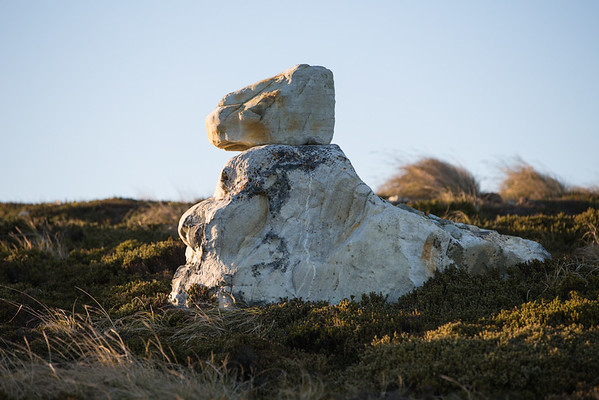 Sphinx-like rocks between Gypsy Cove and Stanley Harbour, Falkland Islands