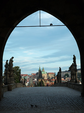 Arch, pigeons, and statues leading across the Charles Bridge to the Lesser Quarter, Prague