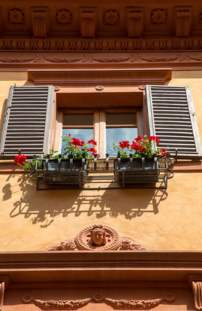 Window shutters and window boxes