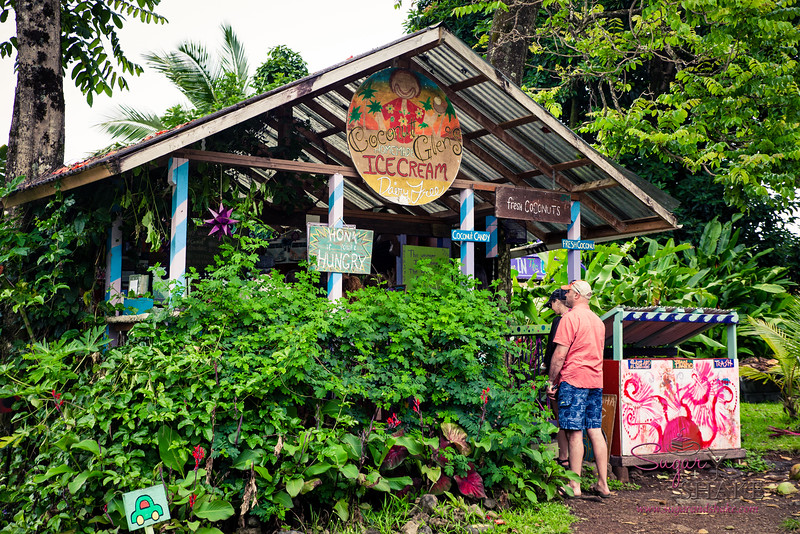 On the way to Hāna, be sure to stop for a treat at Coconut Glen's. © 2015 Sugar + Shake