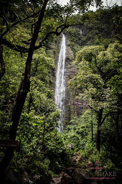 Waimoku Falls at the end of the Pīpīwai Trail. © 2015 Sugar + Shake