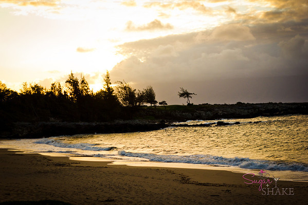Sunset over the bay. It looks very serene, but this is a VERY windy part of Maui. Sugar spent part of the afternoon getting sandblasted on this beach. After getting a complete skin polish on the right side, she gave up and got off the beach. © 2012 Sugar + Shake