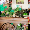 Day 2: Maui Agricultural Festival. Lots of farmers showed up with all kinds of great produce. Loved this farm's cart stand. © 2012 Sugar + Shake