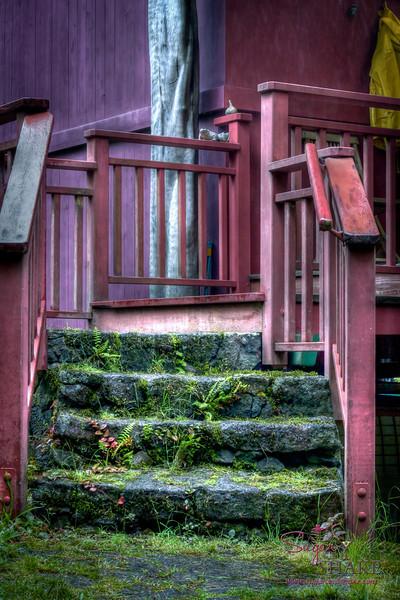 Cottage steps. © 2012 Sugar + Shake