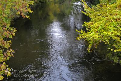 TLR-20141013 Boardman River, Autumn