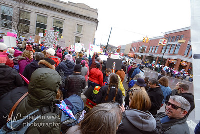 Womens March Traverse City-6352