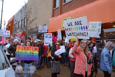 Womens March Traverse City-6439