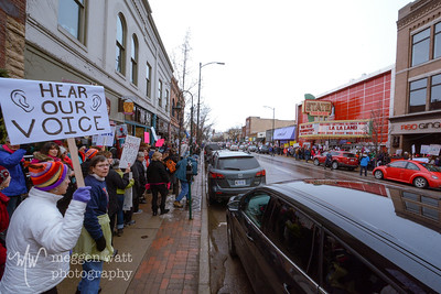 Womens March Traverse City-6406