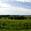 Chateau Chantel Panorama 1